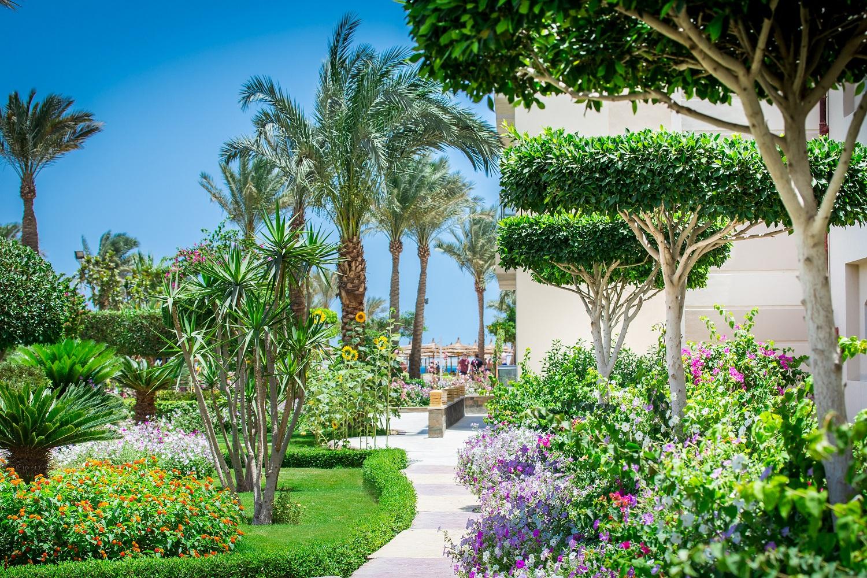 Seagull Beach Resort Hurghada – Olemar Travel